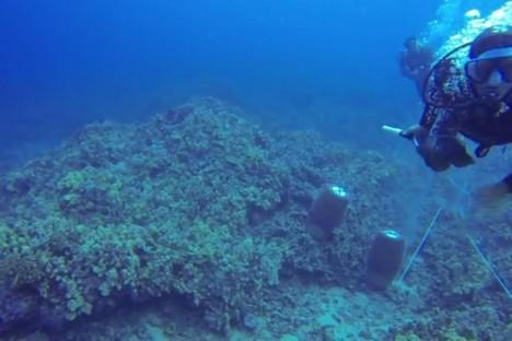 Underwater SCUBA Attack