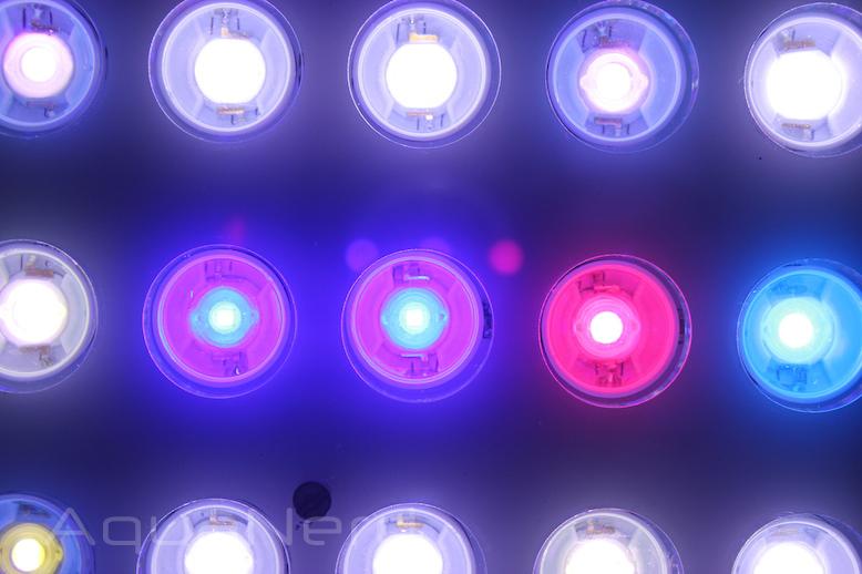 Orphek Atlantik Compact LEDs