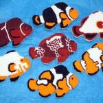 MBI Clownfish Cookies Jason Langer