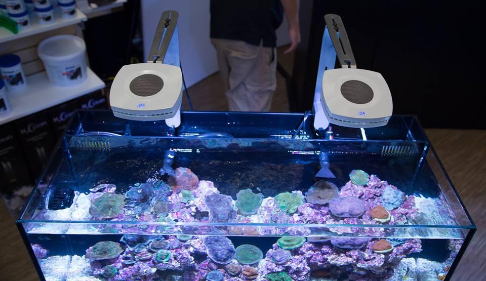 AquaIllumination Prime Fixtures