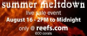 Cherry Corals Summer Meltdown