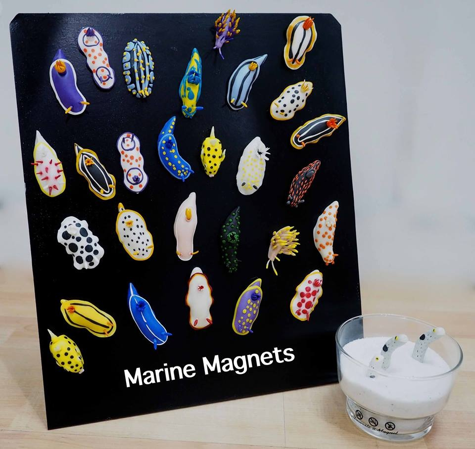 Marine Magnets Collection