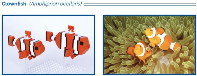 LEGO Clownfish