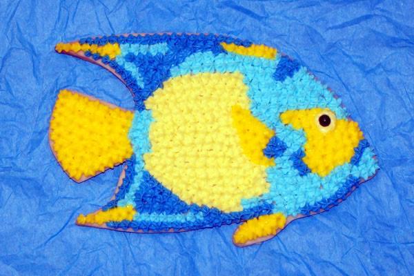 Queen Angelfish Jason Langer