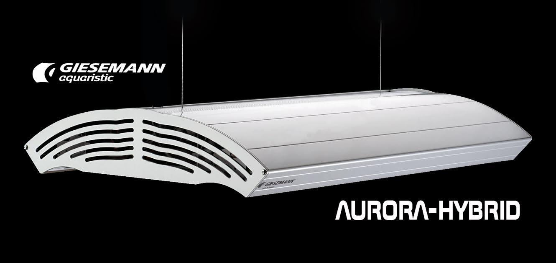 Giesemann Aurora Hybrid Fixture