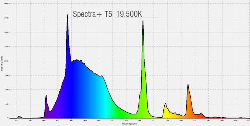 Pacific Sun Spectra+ T5