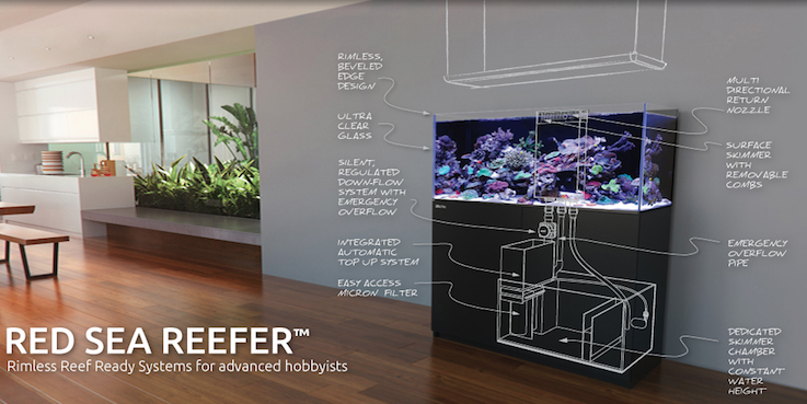 Red Sea REEFER System