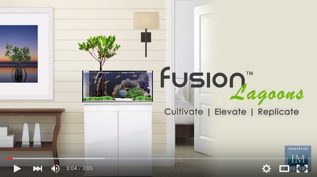 Fusion-Lagoon