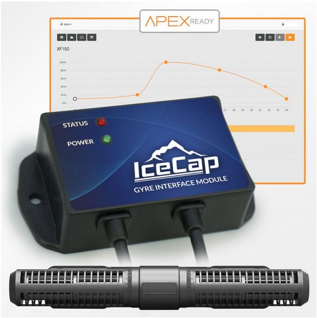 IceCap Gyre Interface
