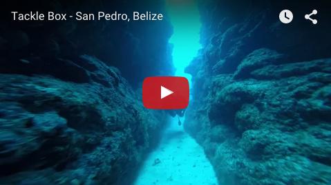Tackle Box - San Pedro, Belize
