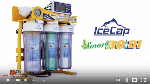 IceCap-RODI-Video-Shot