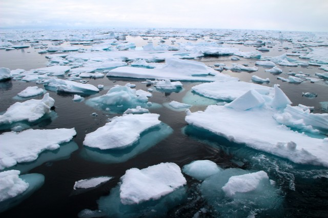photo credit: Icebergs are normally the only thing floating in the waters of the Fram Strait. AWI