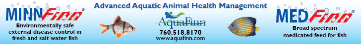 AquaFinn