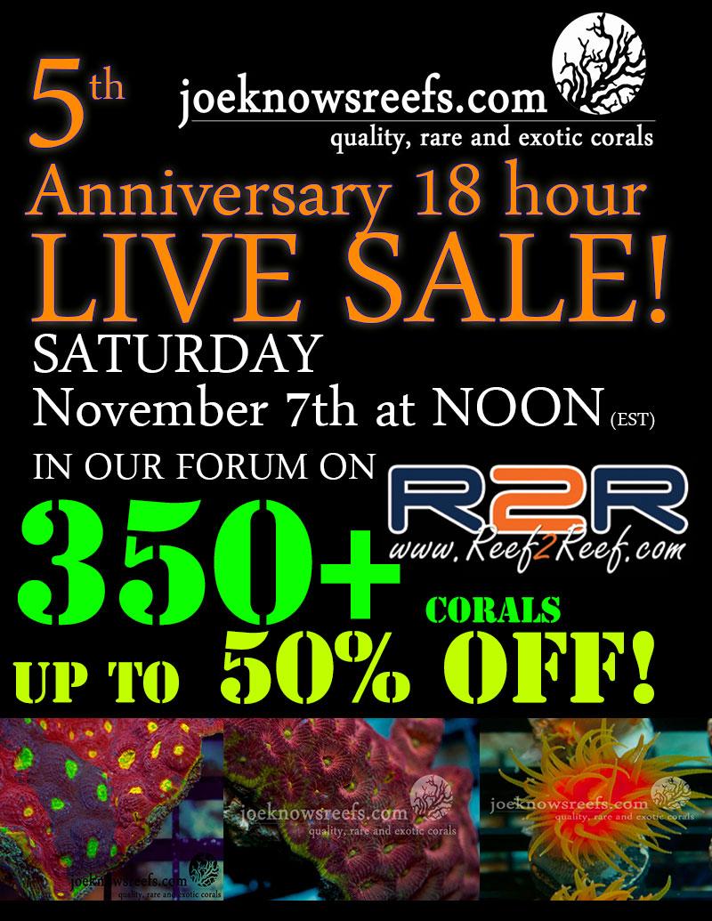 live-sale-2015