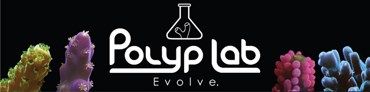 Polyp-Lab-Header-Banner