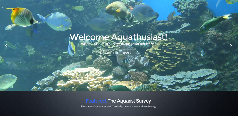 Aquarium-Survey