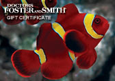 Dr. Foster's and Smith $25.00 Gift Certificate