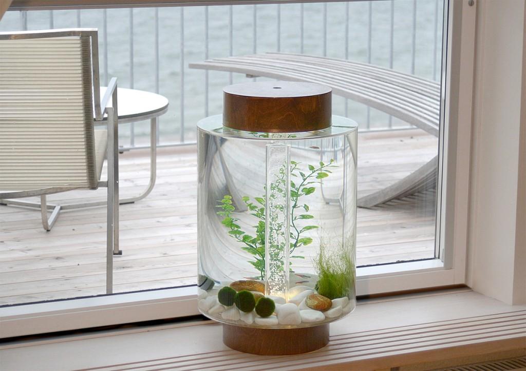 The Home Aquarium Redesigned With Scandinavian Style   AquaNerd