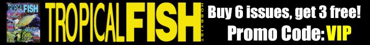 TropicalFishMagazine