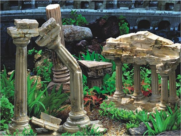 reptile-aquarium