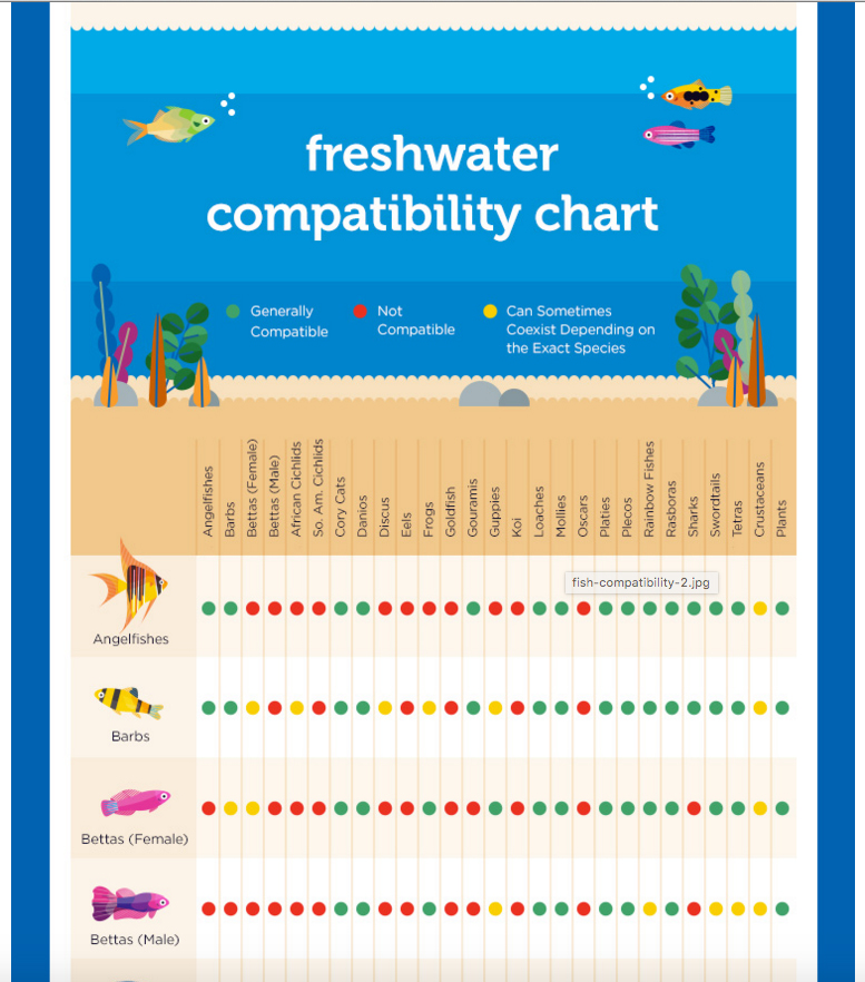Petco Introduces a Freshwater Compatibility Chart | AquaNerd