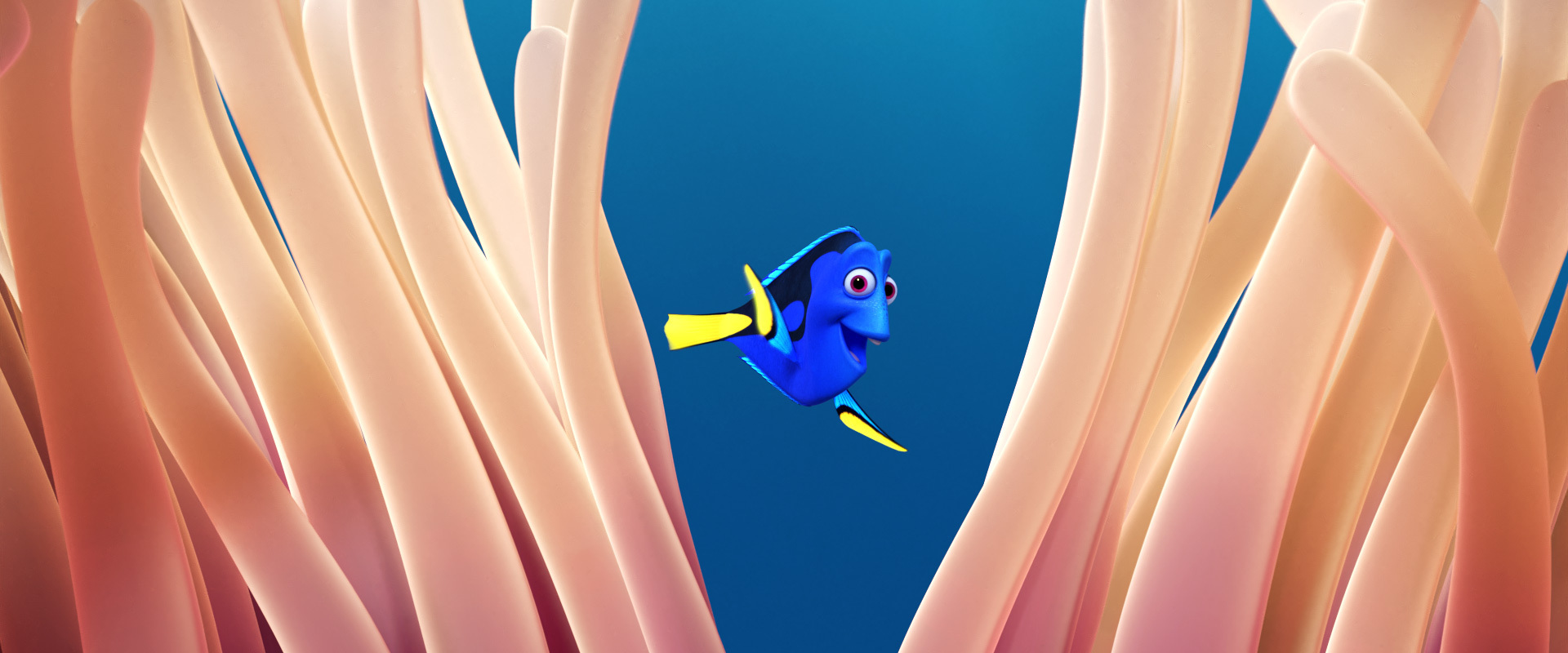 flex_tablet_findingdory_anemone_aaf61780