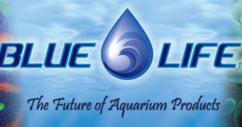 smallest-blue-banner