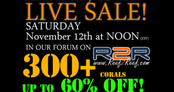 live-sale-2016-nov-med