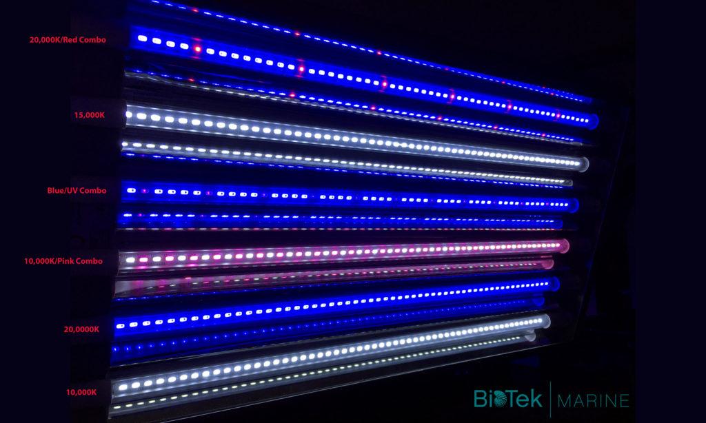 BioTek-Marine-LED-Lights2