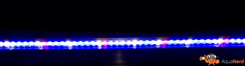 Red-White-Blue-LED-BioTek-Marine