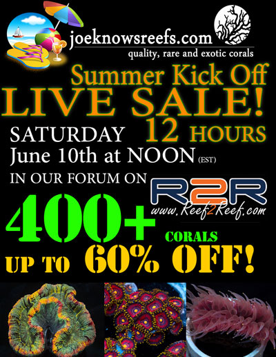 live-sale-2017-june-med