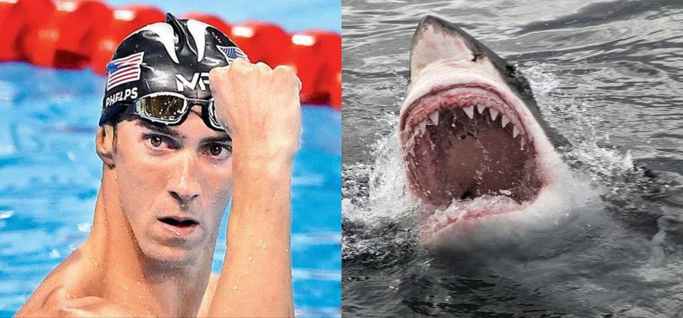 michael-phelps-competes-against-great-white-shark-says-it-was-his-toughest-foe-ever1400a-1500647275_980x457