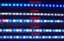 Kona Sun LEDs