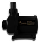 KingKong Zetlight DC Pumps