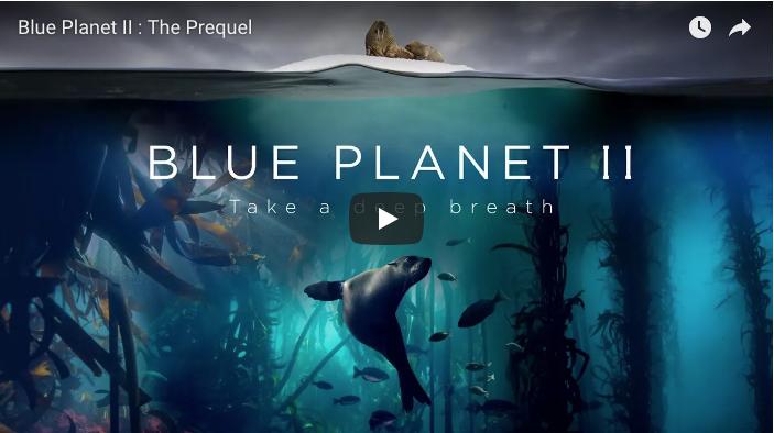 Blue-Plannet-II