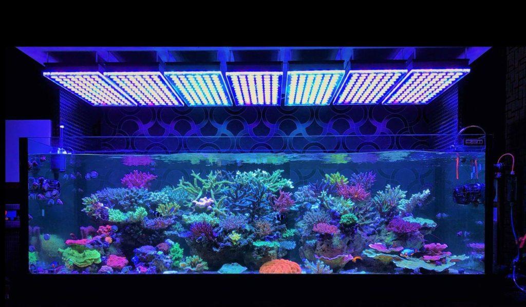 Aquarium-LED-light-Orphek-Atlantik-V4-reef