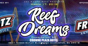 Reef-Dreams